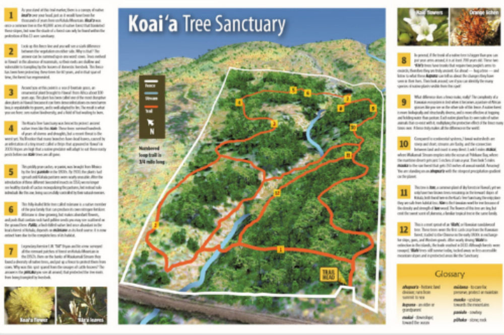 3d_Kohala_Map_500_333